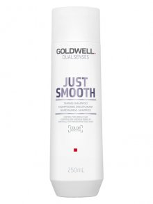 Goldwell Dualsenses Just Smooth Bändigungs Shampoo